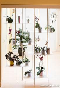 Suspension Pour Plante Interieur : un mur d 39 orchid es une suspension jo a orchidaceae pinterest orchid es suspension et mur ~ Teatrodelosmanantiales.com Idées de Décoration