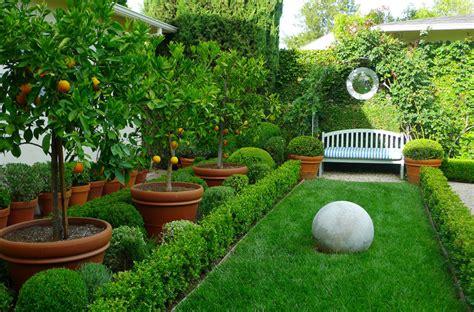 Árboles Frutales En El Diseño Del Jardín