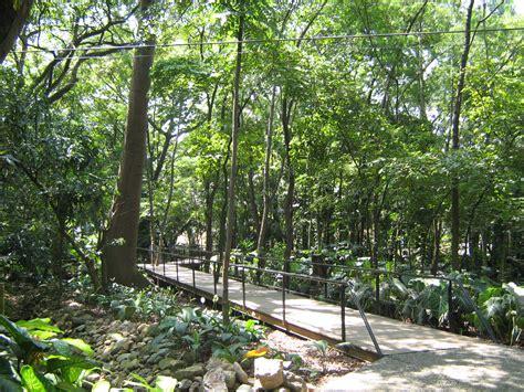 Archivojardin Botanico De Medellinbosque Tropical (2