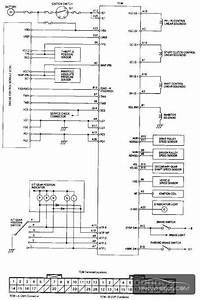 Vtec Wiring Diagram