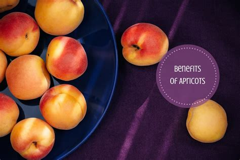 Apricot Health Benefits: A Yummy Fruit Packed With Goodness