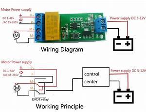 Buhler Motor 5 Wire Diagram 12v