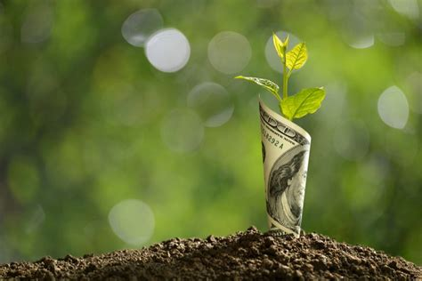 growth stocks  buy  investorplace
