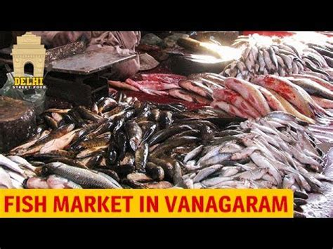 fish market  vanagaram types  fishes  chennai fish