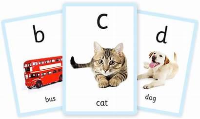 Alphabet Flashcards Number Printable