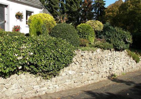 Koniferen-garten Natursteinmauer Und Bepflanzung Mit Koniferen