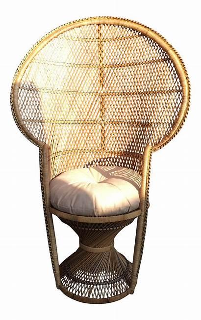 Peacock Chair Accent Wicker Chairish