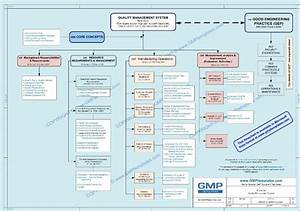 gmp quality management system policy statement buy gmp With qms document numbering system