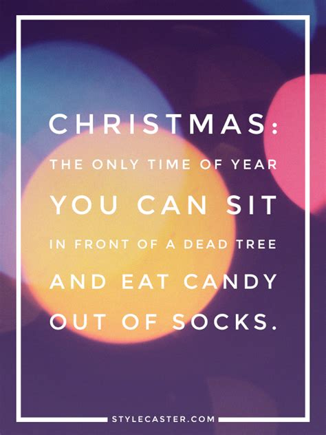 The 25+ Best Funny Holiday Quotes Ideas On Pinterest