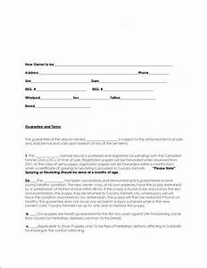 puppy contract of sale hospinoiseworksco With dog breeding contract template