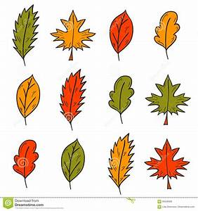 Vector Cartoon Hand Drawn Colorful Autumn Leaves Stock ...