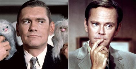 15 Things You Never Knew About 'Bewitched' - Page 7 of 15 ...