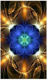 Artistic Flower HD Wallpaper   Background Image   1920x1200