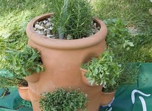 Herbes Aromatiques En Pot : cr er une jardini re de plantes aromatiques ~ Premium-room.com Idées de Décoration