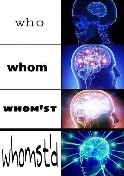 Brain Meme Mind Expand Level Irony Reddit