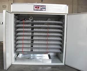 Couveuse Oeuf De Poule : couveuse incubateur automatique 8000 1000 oeufs 500kg ~ Premium-room.com Idées de Décoration