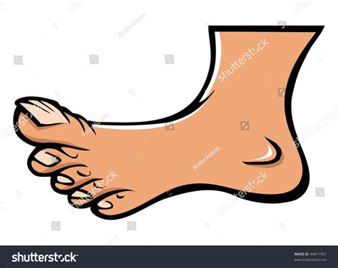 Cartoon Vector Illustration Human Foot