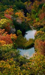62 best Lost Maples Texas State Park images on Pinterest ...