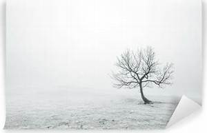 Papier Peint Arbre Noir Et Blanc : papiers peints arbres pixers nous vivons pour changer ~ Nature-et-papiers.com Idées de Décoration