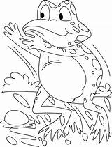 Frog Coloring Frogs Pages Tree Eye Theme Cool Getdrawings Colorings Drawing sketch template