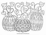 Coloring Halloween Adults Pumpkin Pumpkins Three Delight Witch Ages Owl Shared Sure sketch template