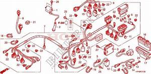 2007 Honda Rancher 420 Wiring Harness Diagram