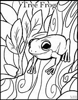 Frog Coloring Pages Adults Getcolorings Frogs Tree Drawings Printable sketch template