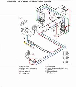 How Is The Trim Limit Switch Supposed To Function  Page  1