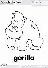 Gorilla Coloring Simple Super Pages Animal Worksheets Learning Songs Flashcards Kindergarten Colouring Animals Resource Room Yes Supersimple Flashcard Zoo Wag sketch template