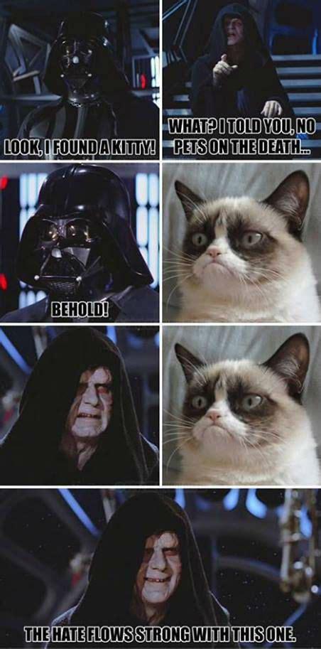 Star Wars Cat Meme - grumpy cat darth vader grumpy cat meme grumpy cat funny grumpy cat humor for the funniest