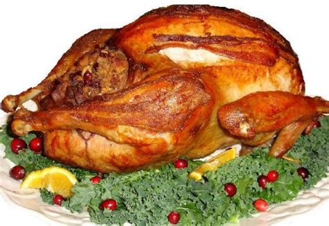 how to cook a stuffed turkey orange cranberry stuffed turkey poultry recipe orange cranberry stuffed turkey dish cooking
