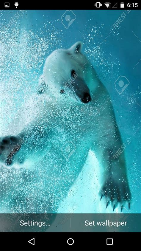 buy android underwater live wallpaper chupamobile