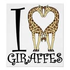 giraffe stencil art ideas pinterest giraffe