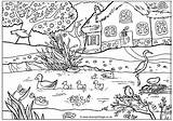 Coloring Pages Spring Colouring Ducks Garden Pond Adult Scenery Gardens sketch template