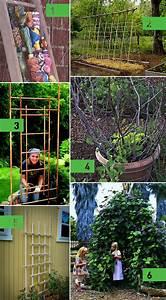 Roundup: 6 DIY Garden Trellis Ideas » Curbly DIY Design