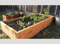 Build Your Own Raised Planting Beds YouTube