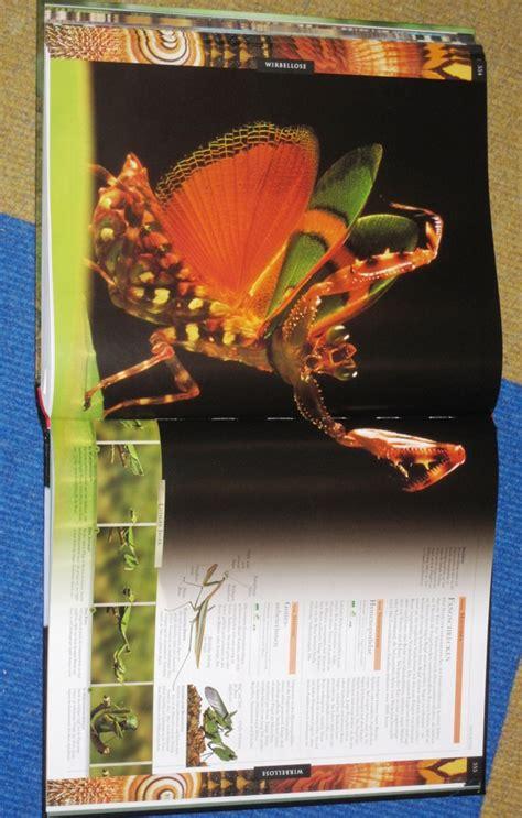Großes Bild über by Tiere Die Gro 223 E Bild Enzyklop 228 Die Cornelia Franke