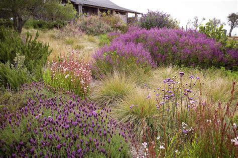 meadow gardens dream landscapes 10 perennial gardens inspired by piet oudolf gardenista