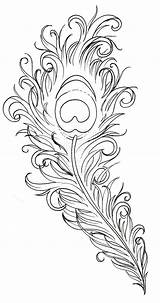 Peacock Coloring Feathers sketch template