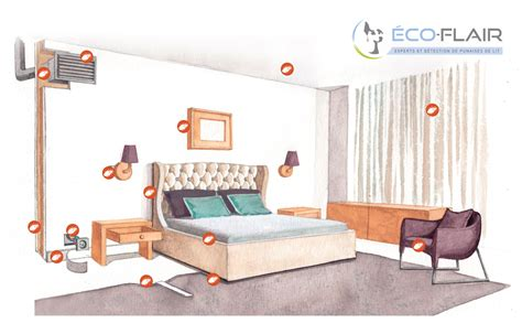 nettoyage chambre hotel comment reconnaître la présence de punaises de lit eco