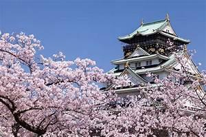 Excursi U00f3n A Osaka Desde Kioto En Espa U00f1ol  U21d2  U3010barato U3011