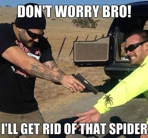 Kill Spider Meme - dont worry bro