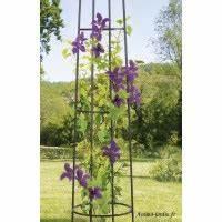 Arche Metal Pour Plante Grimpante : tuteur support plante arche pergola treillage ~ Premium-room.com Idées de Décoration