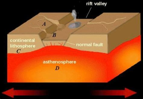 Rift Diagram by Course Discussions And General Opinions The Great Rift Valley