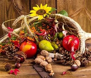 Schöne Herbstbilder Kostenlos : papeis de parede outono girassol ma s noz peras baga ~ A.2002-acura-tl-radio.info Haus und Dekorationen