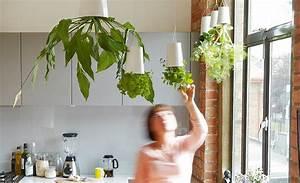 pflanzgefass hangender blumentopf mobel ausstattung With französischer balkon mit garten wc selber bauen