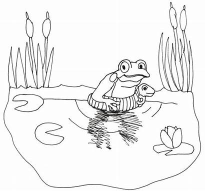 Coloring Froggy Swimmer