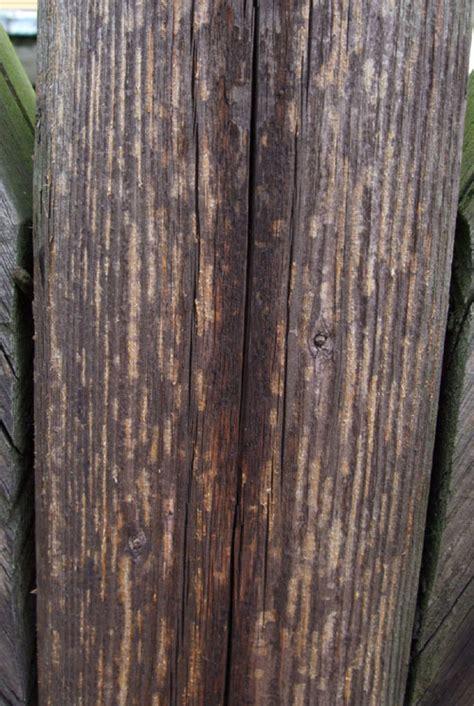 Holz Auf Alt Gemacht by Holz Auf Alt Trimmen Aussenk Che Selbst Bauen Wokk Che