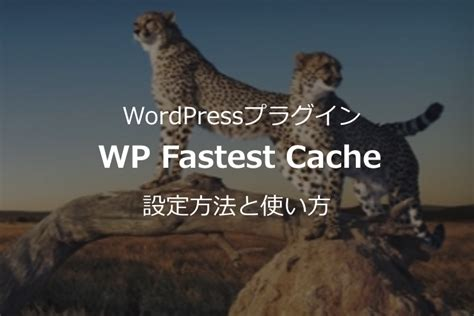 Wp Fastest Cacheの設定方法と使い方|日本語対応で使いやすいwordpressプラグイン