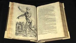 On The Workings Of The Human Body  De Humani Corporis